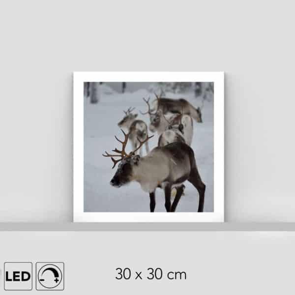 Lampe rennes