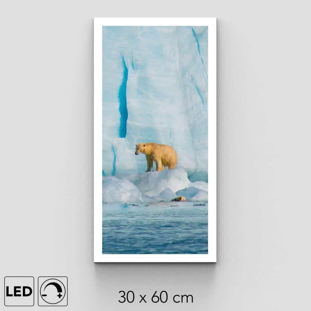 applique murale ours blanc