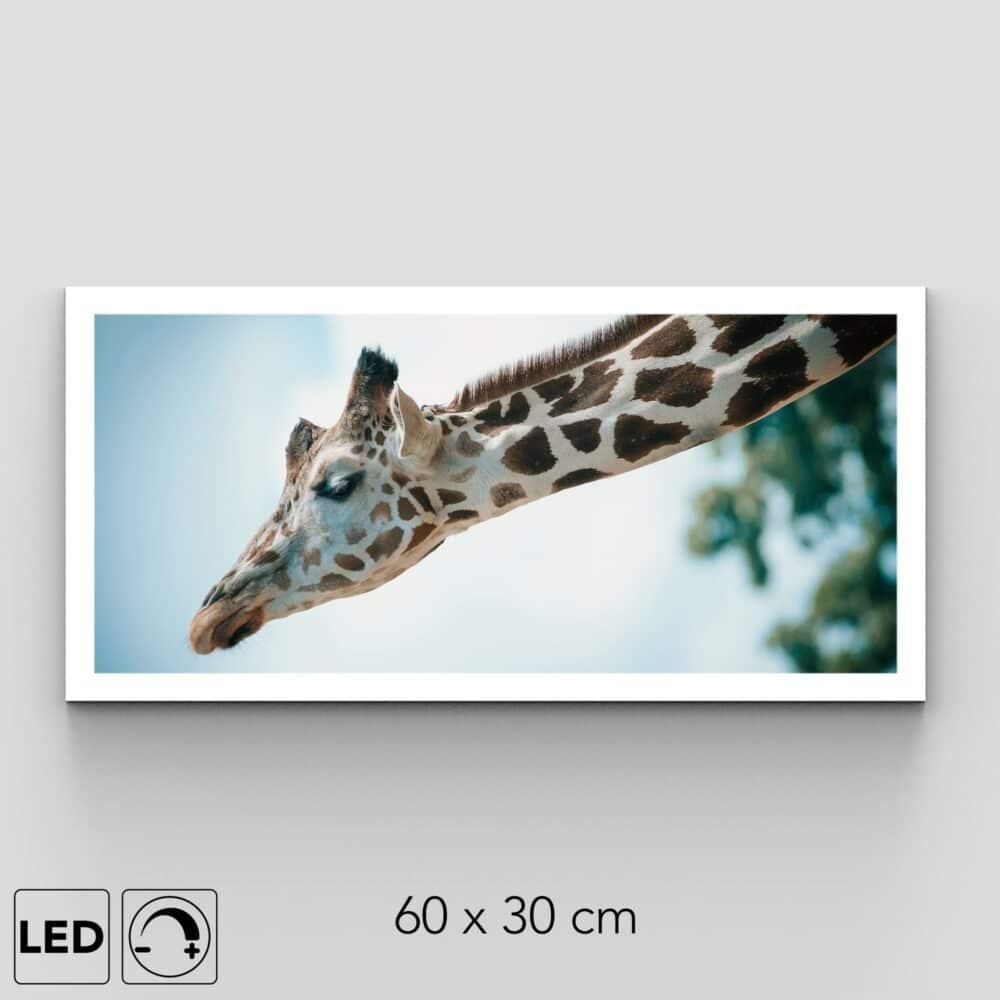 Plafonnier girafe présentation